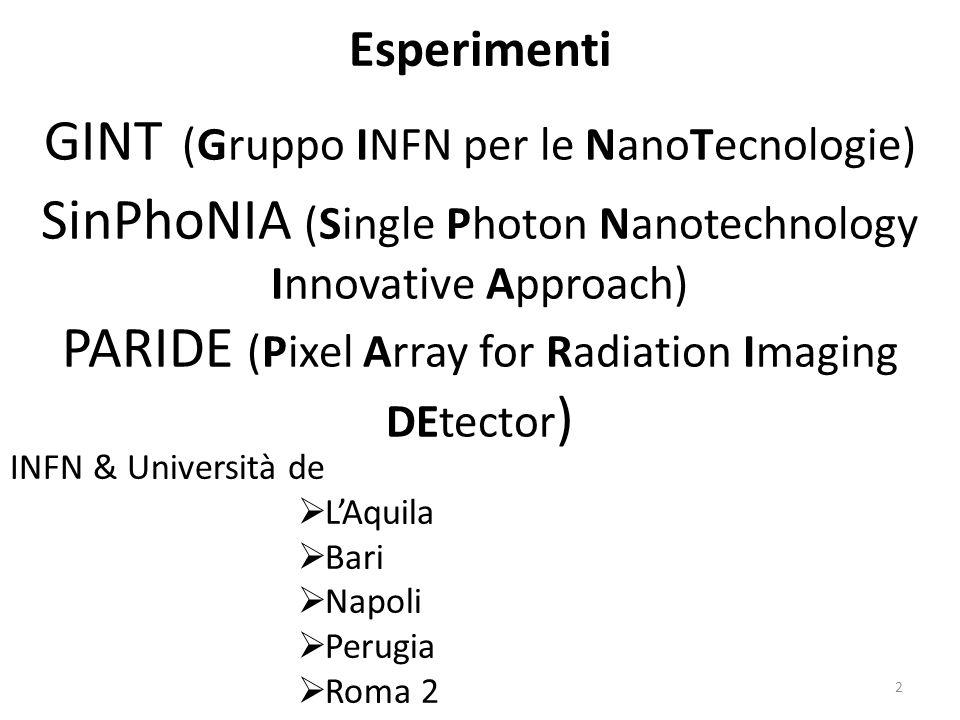GINT (Gruppo INFN per le NanoTecnologie)