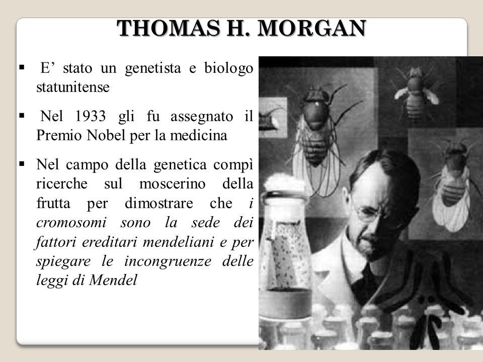 THOMAS H. MORGAN E' stato un genetista e biologo statunitense