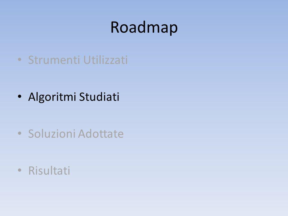 Roadmap Strumenti Utilizzati Algoritmi Studiati Soluzioni Adottate
