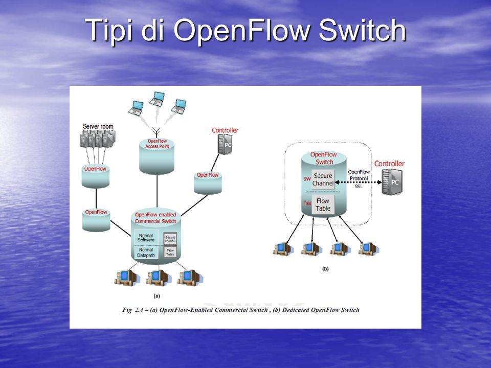 Tipi di OpenFlow Switch