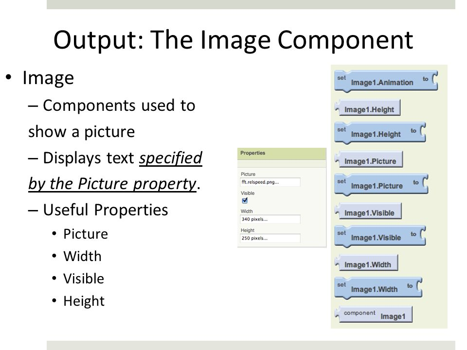 Output: The Image Component
