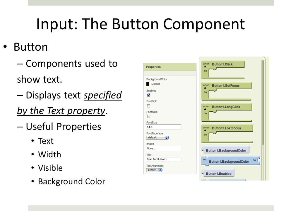 Input: The Button Component
