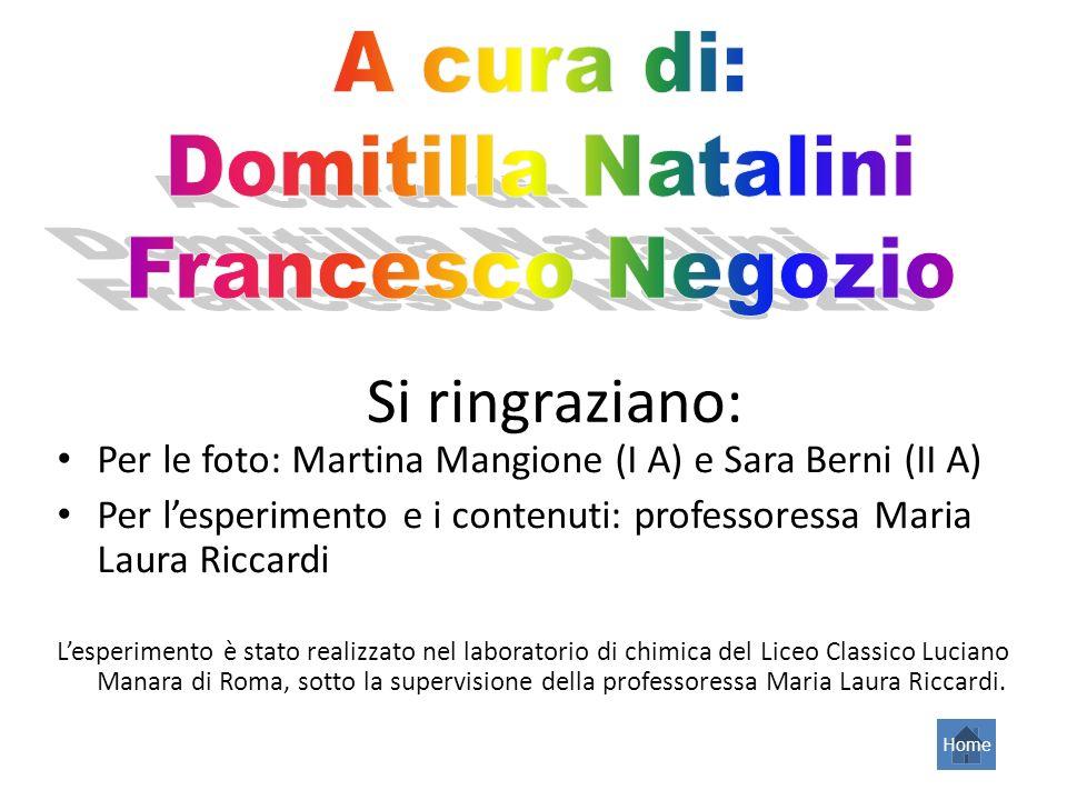 Si ringraziano: A cura di: Domitilla Natalini Francesco Negozio
