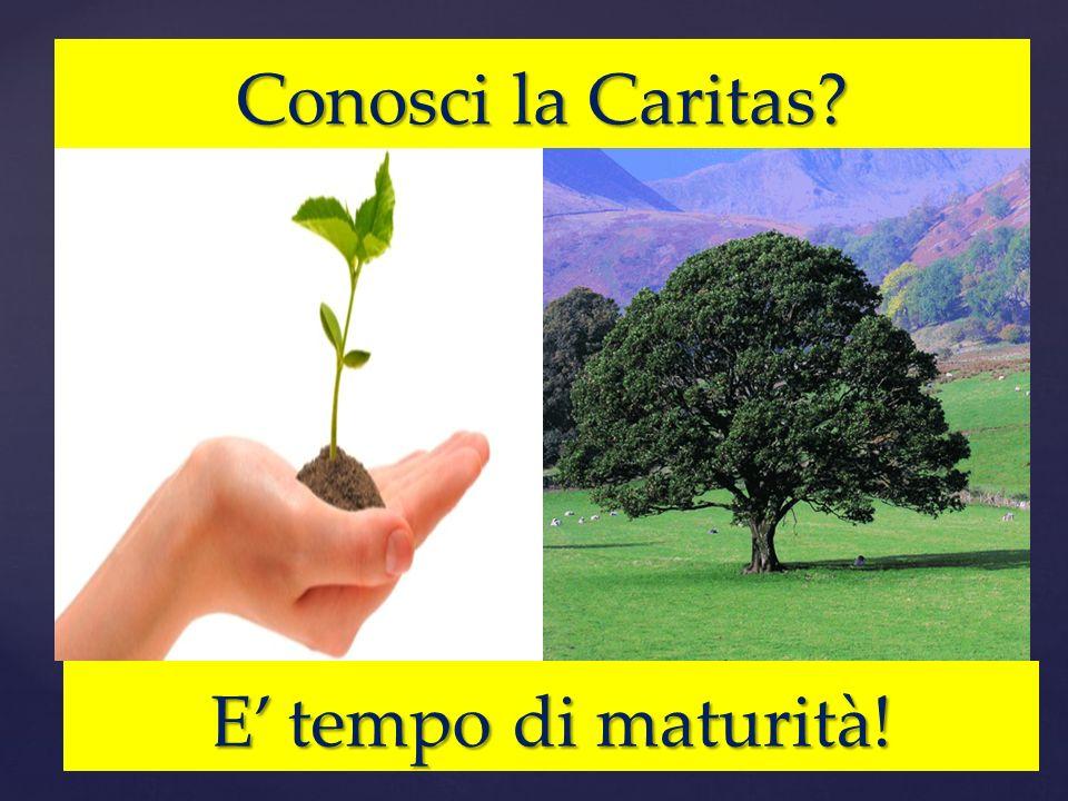 Conosci la Caritas E' tempo di maturità!