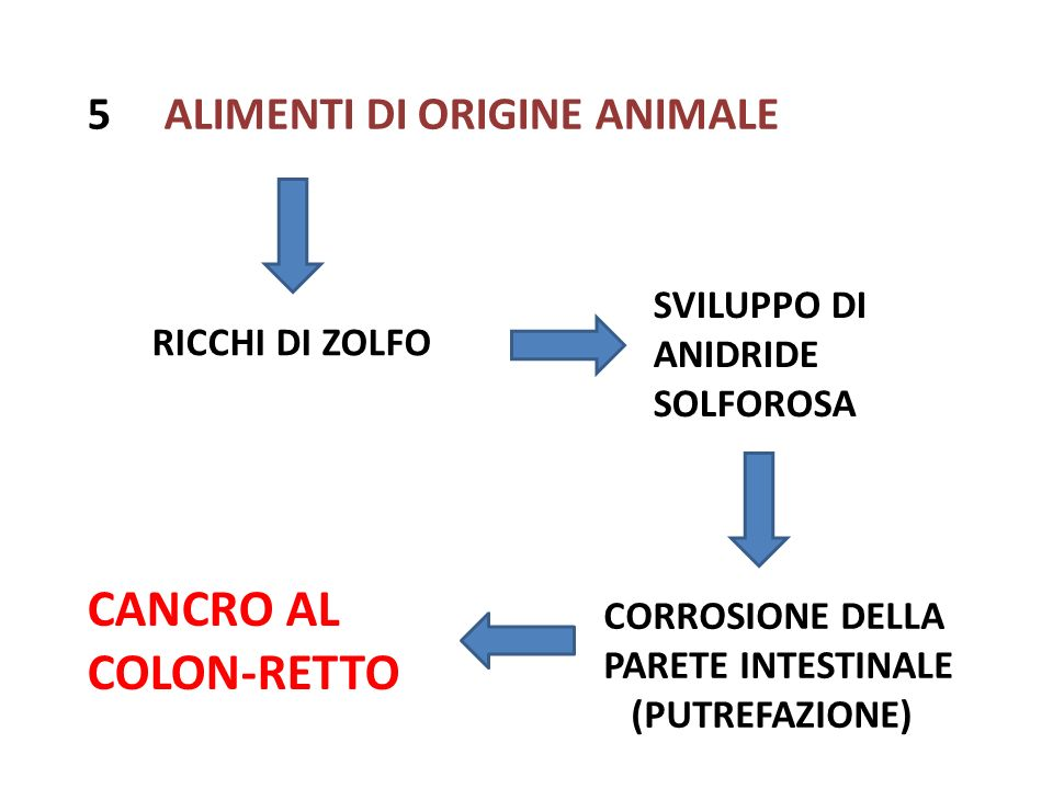CANCRO AL COLON-RETTO 5 ALIMENTI DI ORIGINE ANIMALE