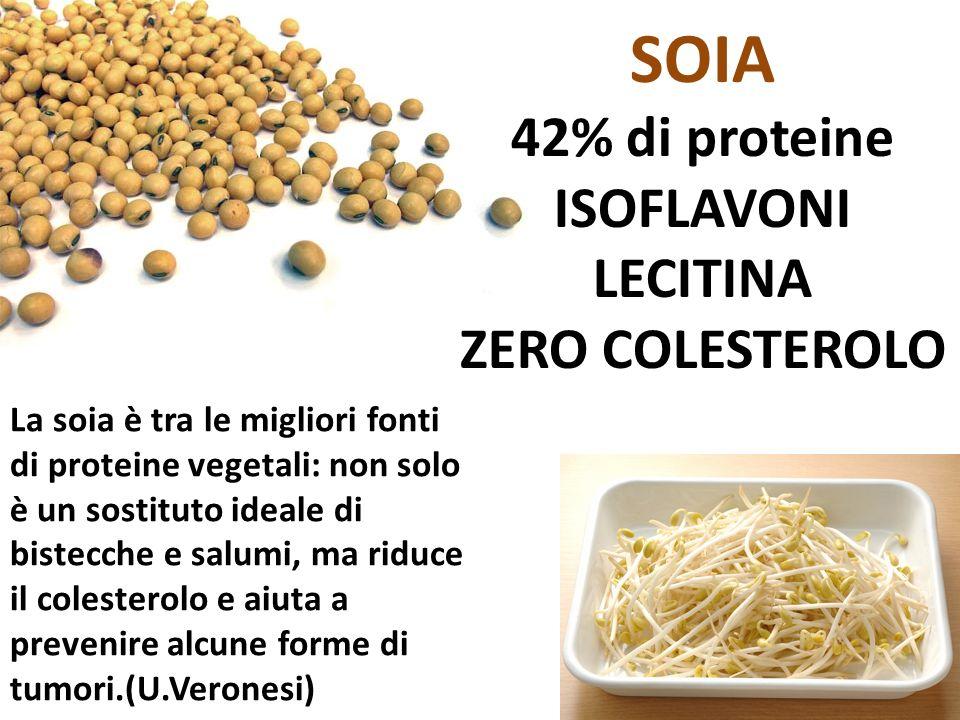 SOIA 42% di proteine ISOFLAVONI LECITINA ZERO COLESTEROLO