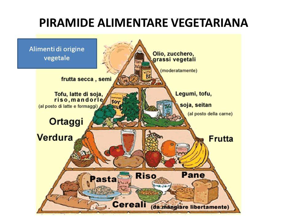 Alimenti di origine vegetale