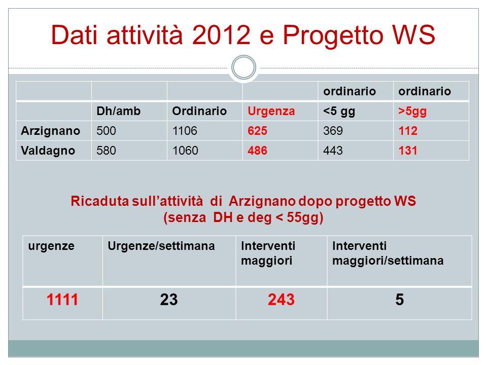 Dati attività 2012 e Progetto WS