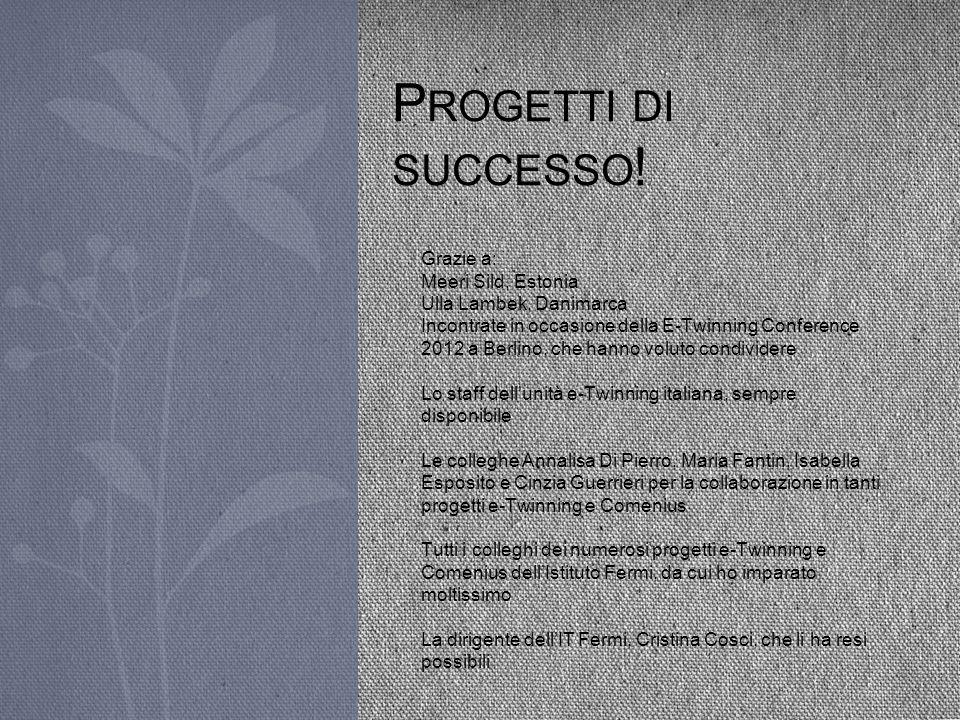 Progetti di successo! Grazie a: Meeri Sild, Estonia