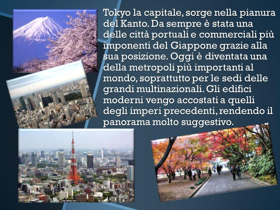 Tokyo la capitale, sorge nella pianura del Kanto