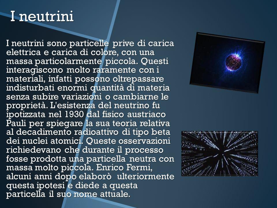 I neutrini