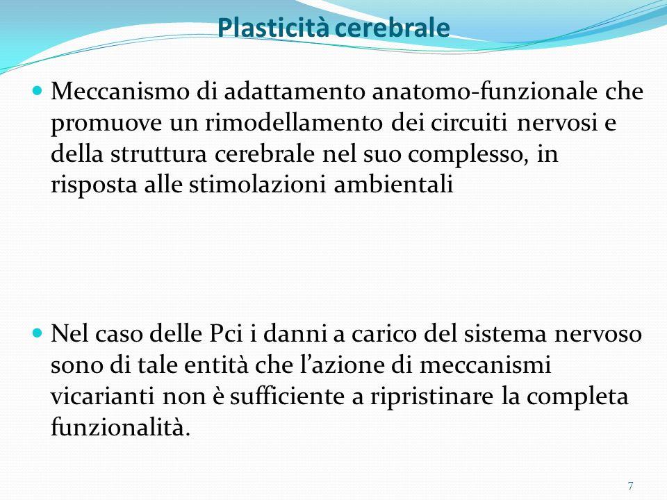 Plasticità cerebrale