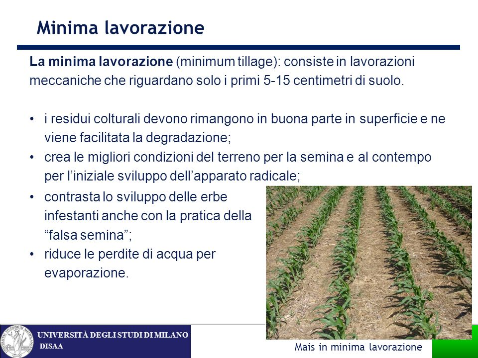 Minima lavorazione La minima lavorazione (minimum tillage): consiste in lavorazioni meccaniche che riguardano solo i primi 5-15 centimetri di suolo.