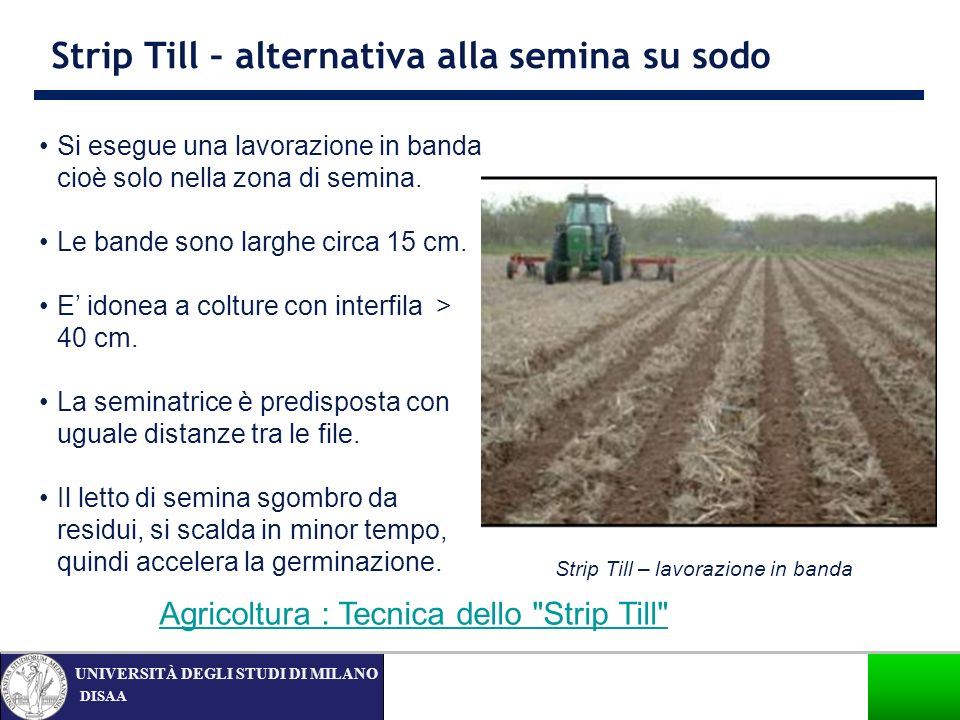 Strip Till – alternativa alla semina su sodo