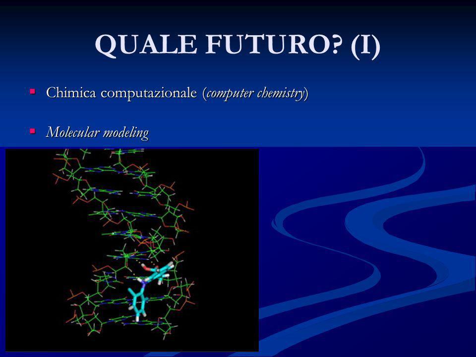 QUALE FUTURO (I) Chimica computazionale (computer chemistry)