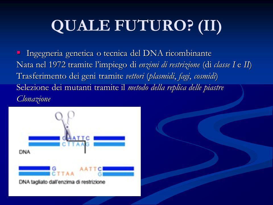 QUALE FUTURO (II) Ingegneria genetica o tecnica del DNA ricombinante