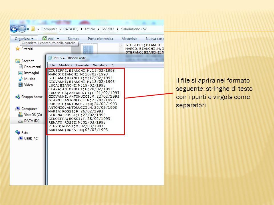 Il file si aprirà nel formato seguente: stringhe di testo con i punti e virgola come separatori