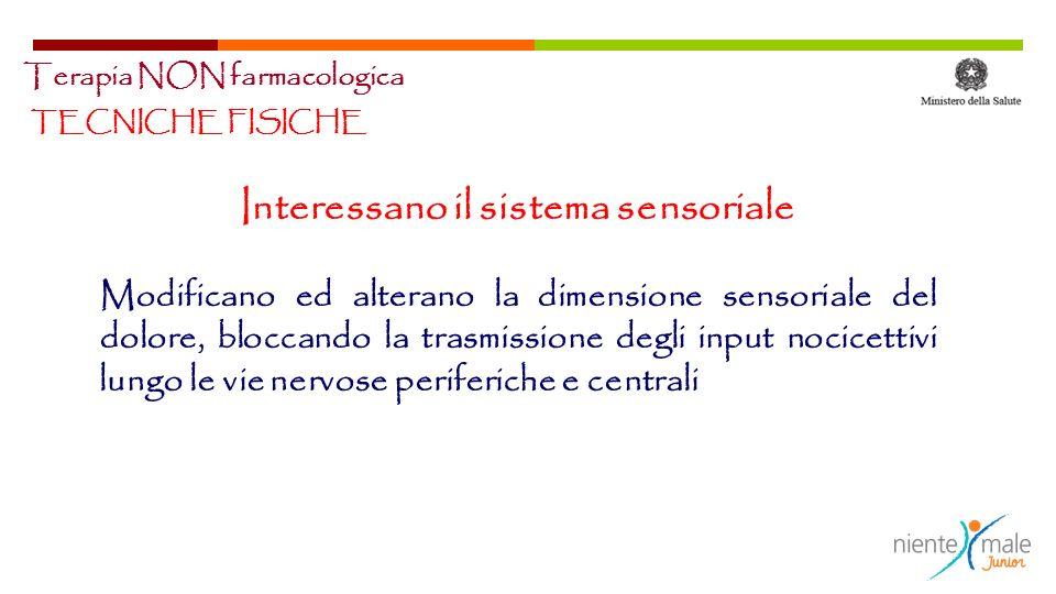 Interessano il sistema sensoriale