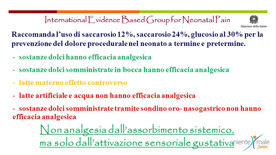 International Evidence Based Group for Neonatal Pain