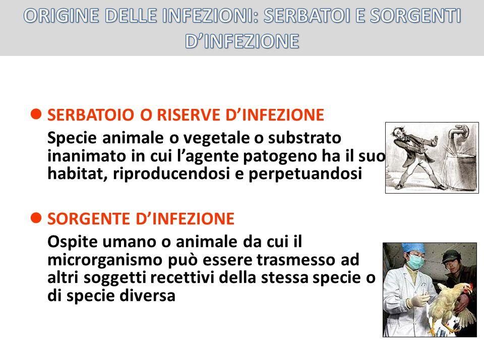 ORIGINE DELLE INFEZIONI: SERBATOI E SORGENTI D'INFEZIONE