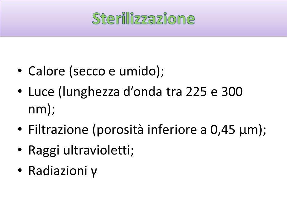 Sterilizzazione Calore (secco e umido);