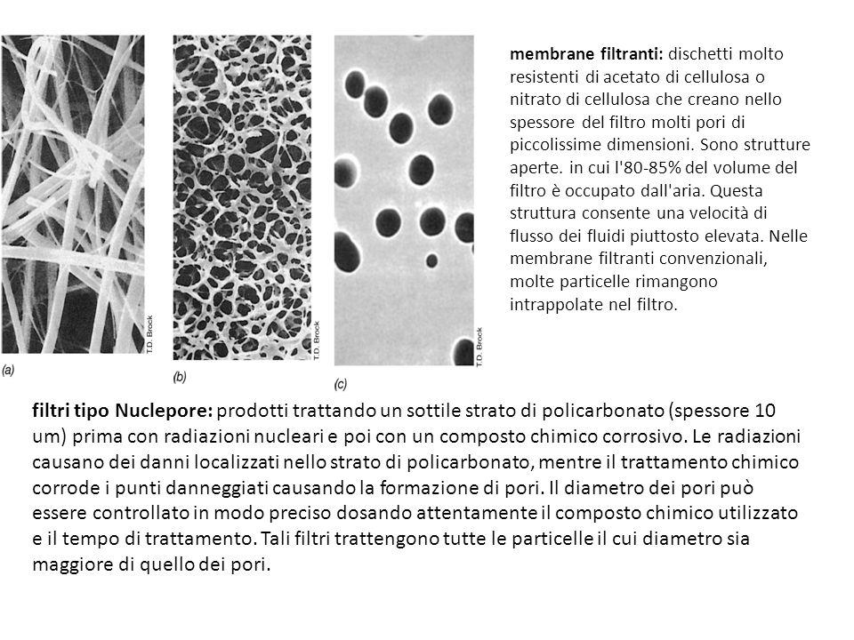 membrane filtranti: dischetti molto resistenti di acetato di cellulosa o nitrato di cellulosa che creano nello spessore del filtro molti pori di piccolissime dimensioni. Sono strutture aperte. in cui l 80‑85% del volume del filtro è occupato dall aria. Questa struttura consente una velocità di flusso dei fluidi piuttosto elevata. Nelle membrane filtranti convenzionali, molte particelle rimangono intrappolate nel filtro.