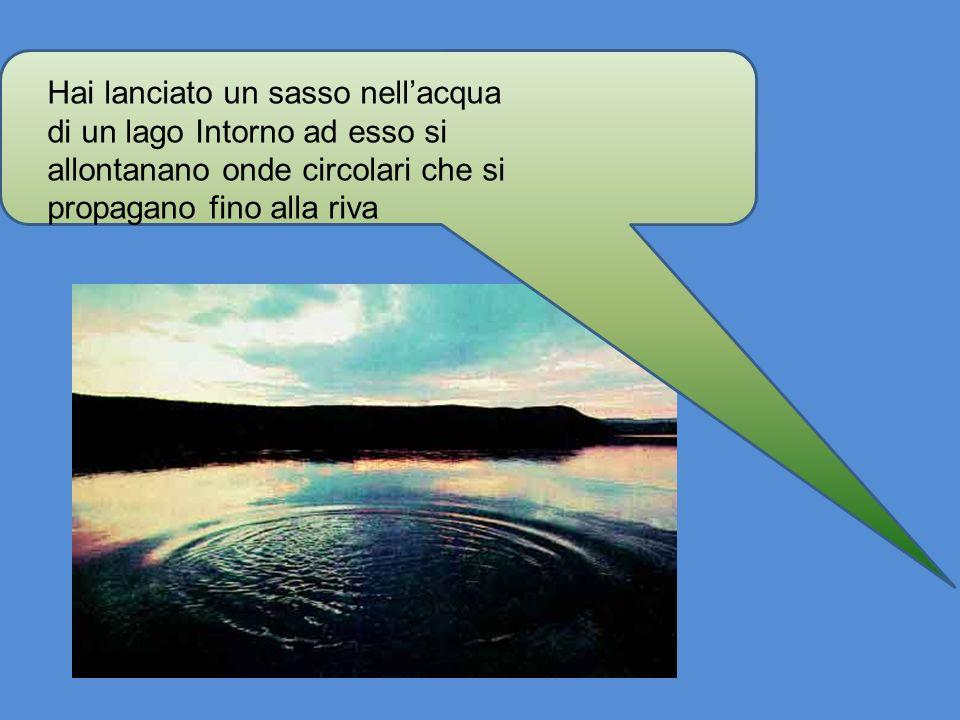 Hai lanciato un sasso nell'acqua di un lago Intorno ad esso si allontanano onde circolari che si propagano fino alla riva