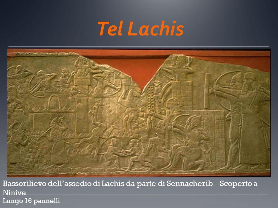 Tel Lachis