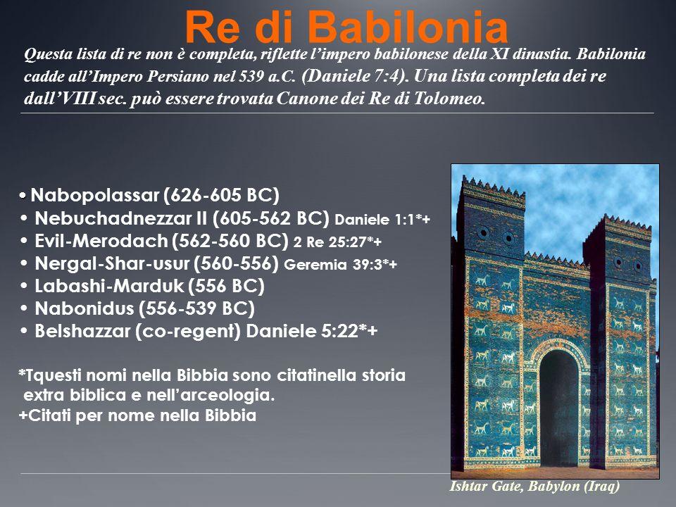 Re di Babilonia Nabopolassar (626-605 BC)
