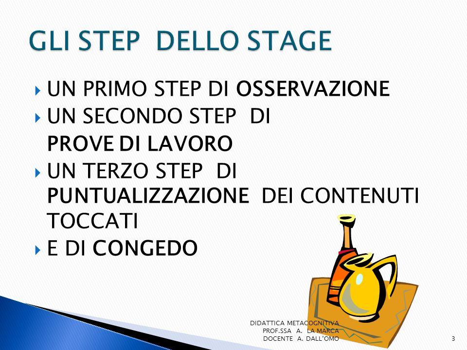 GLI STEP DELLO STAGE UN PRIMO STEP DI OSSERVAZIONE UN SECONDO STEP DI