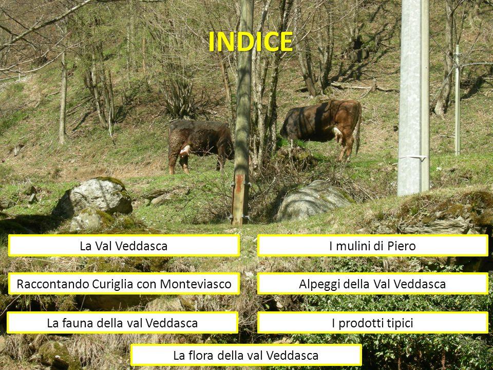 INDICE La Val Veddasca I mulini di Piero