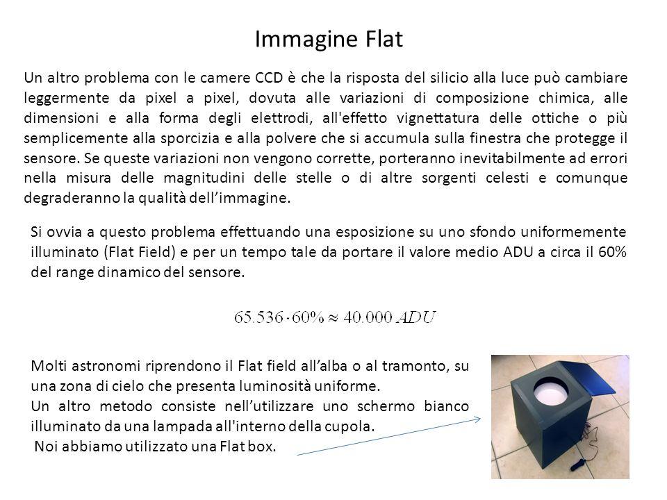Immagine Flat