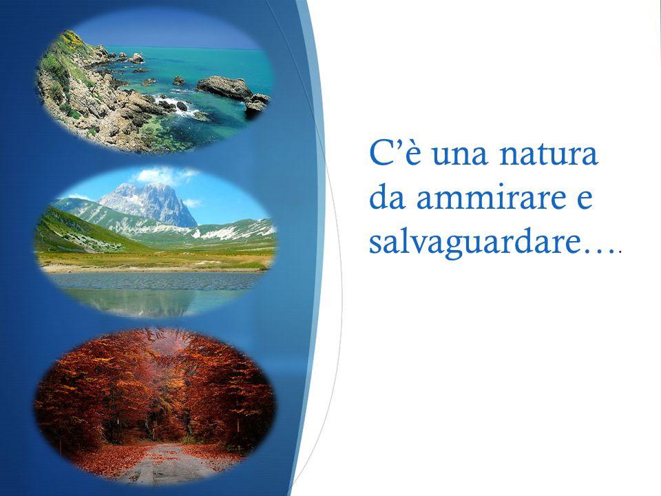 C'è una natura da ammirare e salvaguardare….