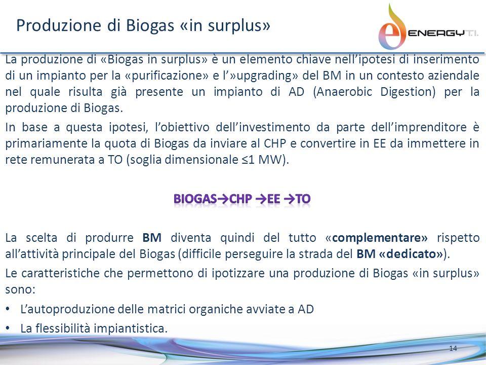 Produzione di Biogas «in surplus»
