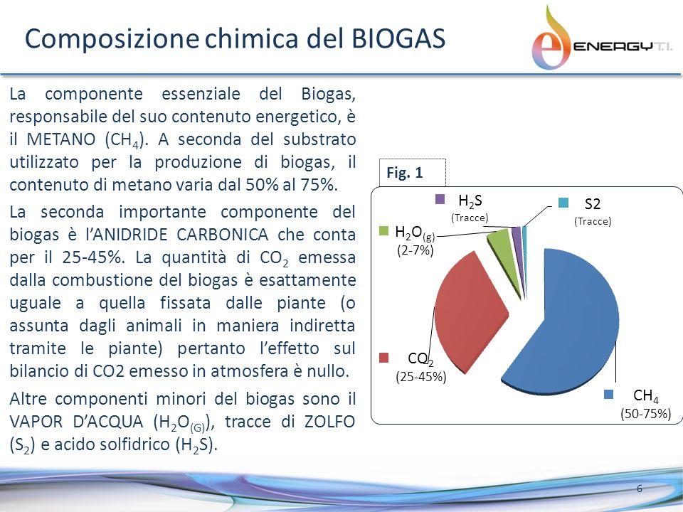 Composizione chimica del BIOGAS