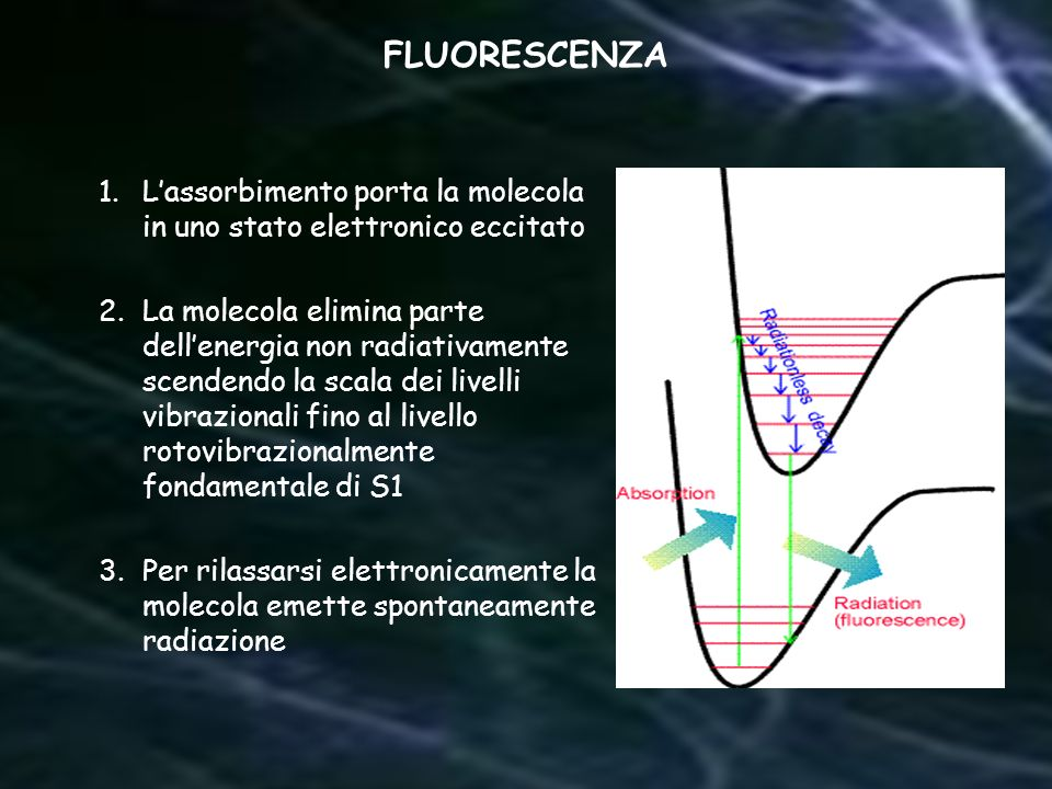 FLUORESCENZA L'assorbimento porta la molecola in uno stato elettronico eccitato.