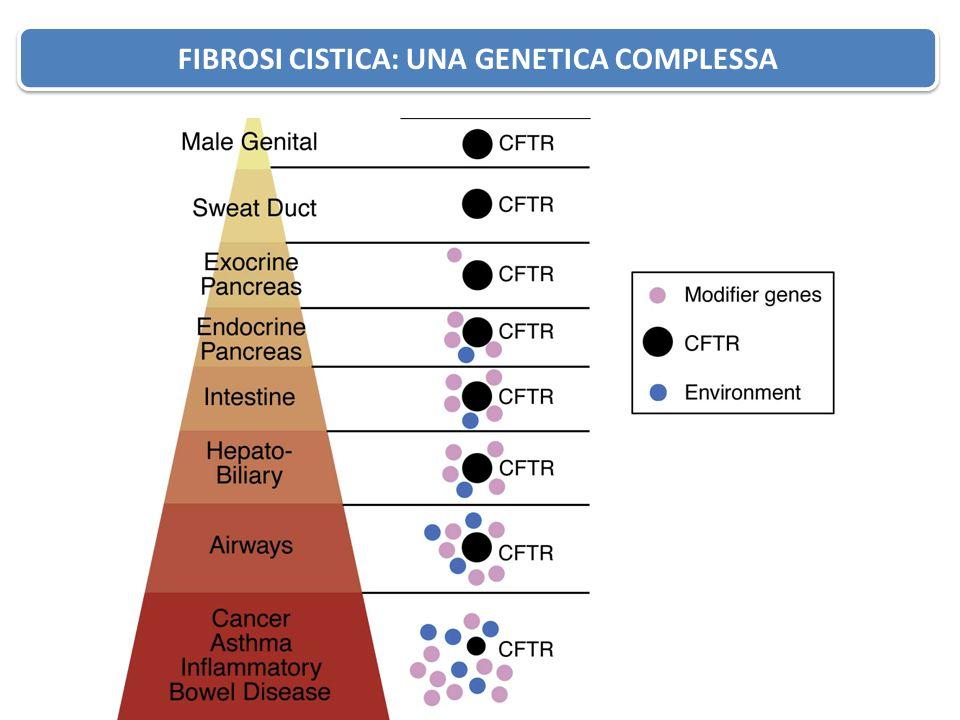 Fibrosi Cistica: Genetica complessa
