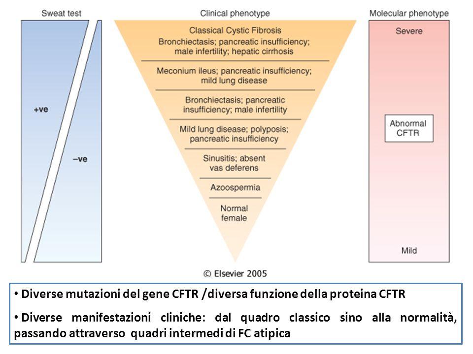 Diverse mutazioni del gene CFTR /diversa funzione della proteina CFTR