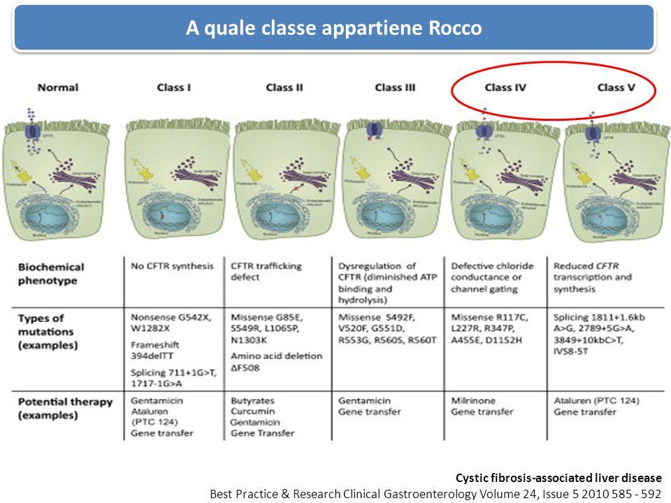 A quale classe appartiene Rocco