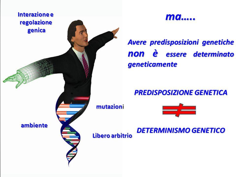 ma….. Avere predisposizioni genetiche non è essere determinato geneticamente. PREDISPOSIZIONE GENETICA.