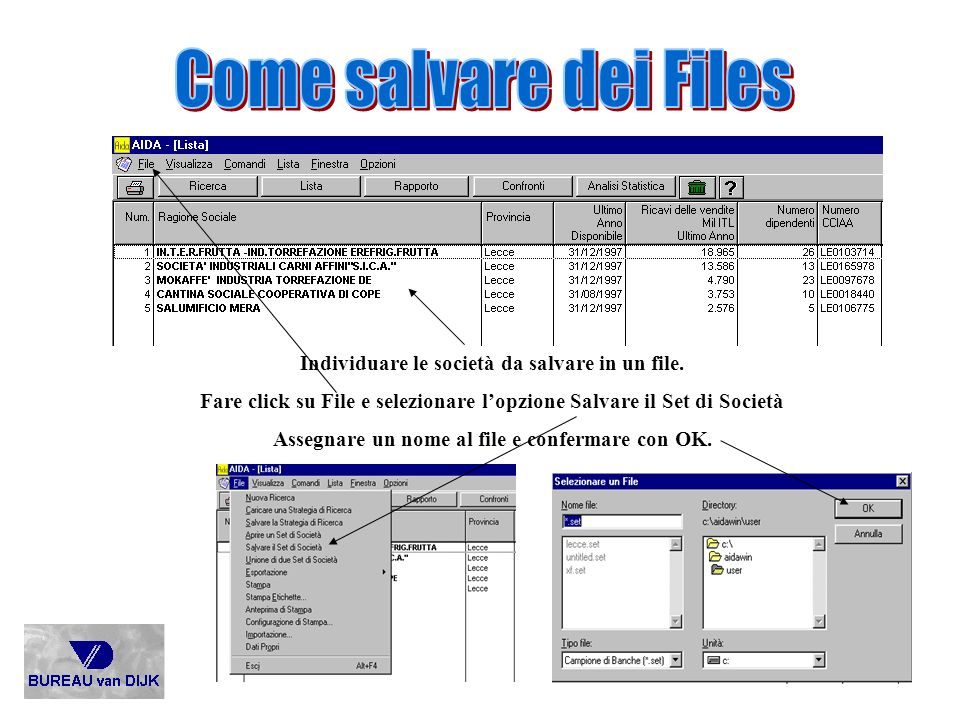 Come salvare dei Files Individuare le società da salvare in un file.