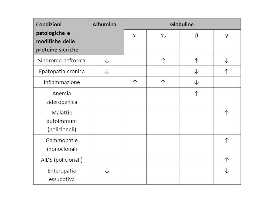 Condizioni patologiche e modifiche delle proteine sieriche Albumina