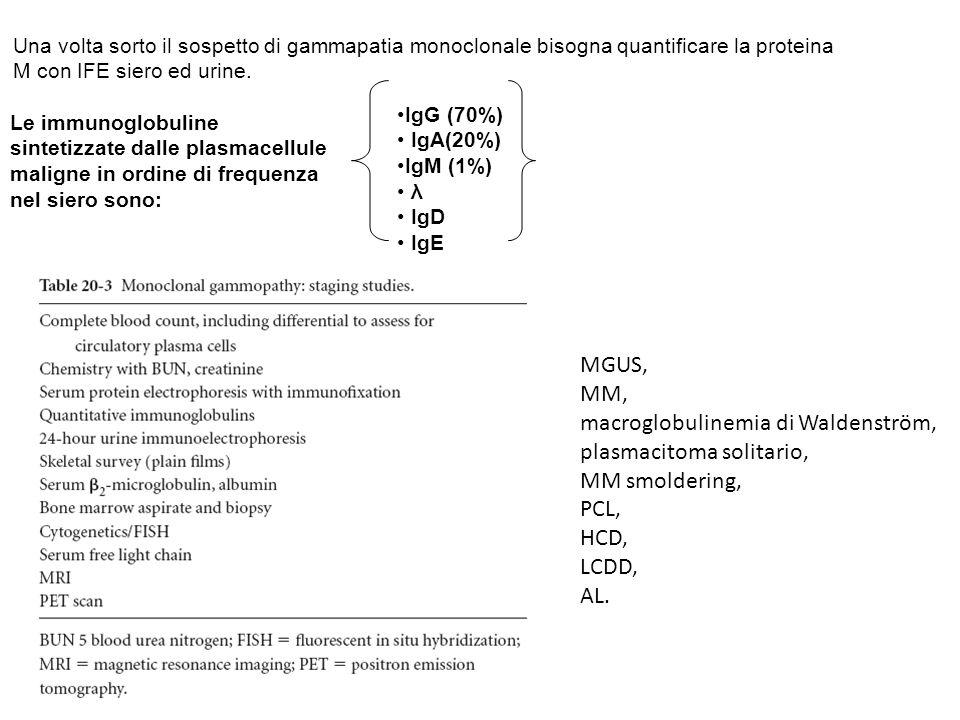 macroglobulinemia di Waldenström, plasmacitoma solitario,