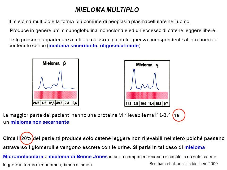 MIELOMA MULTIPLO Il mieloma multiplo è la forma più comune di neoplasia plasmacellulare nell'uomo.