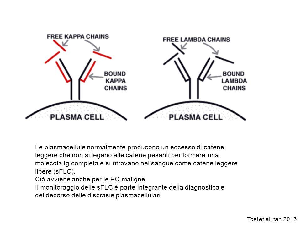 Le plasmacellule normalmente producono un eccesso di catene