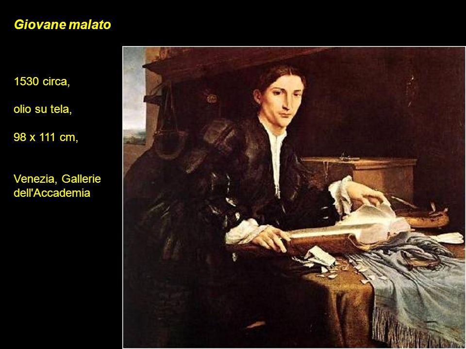 Giovane malato 1530 circa, olio su tela, 98 x 111 cm,