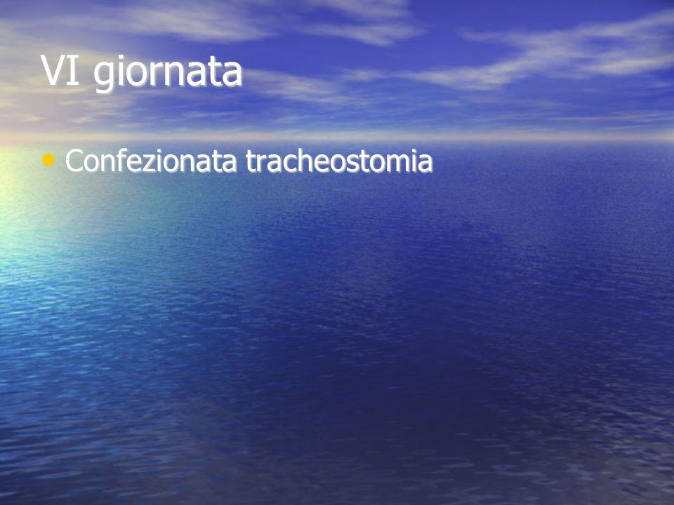 VI giornata Confezionata tracheostomia