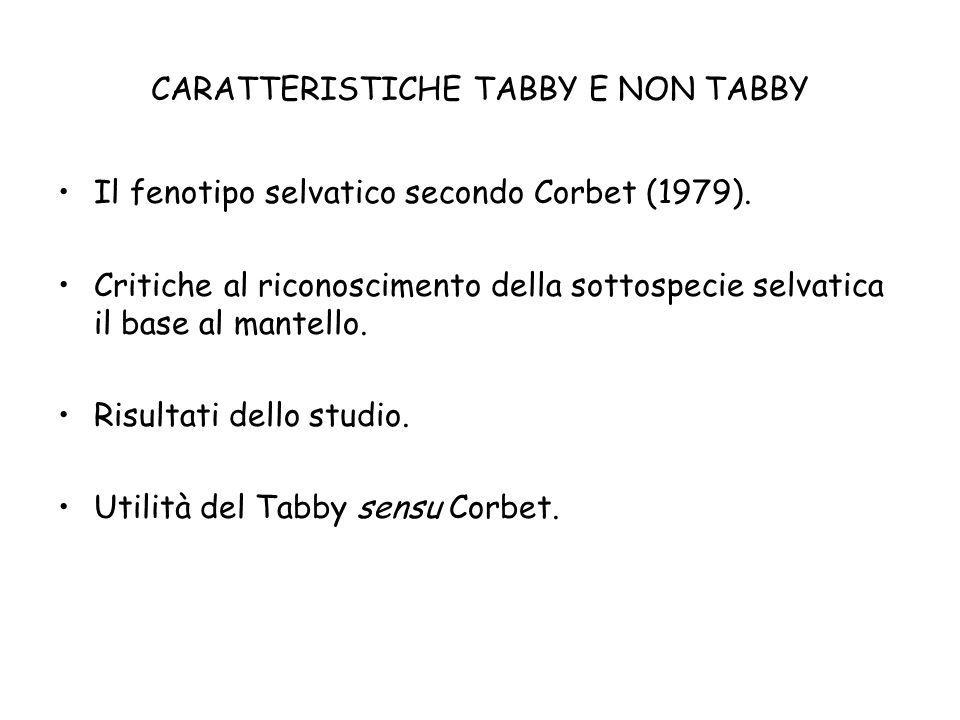 CARATTERISTICHE TABBY E NON TABBY