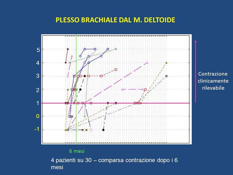 PLESSO BRACHIALE DAL M. DELTOIDE