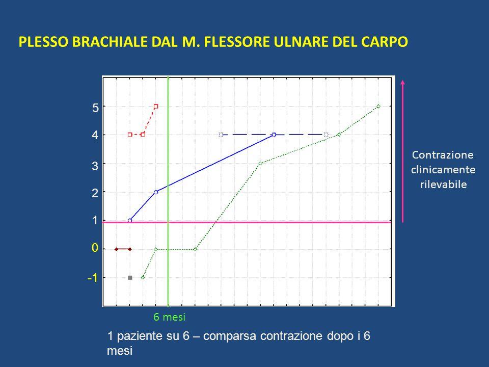 PLESSO BRACHIALE DAL M. FLESSORE ULNARE DEL CARPO